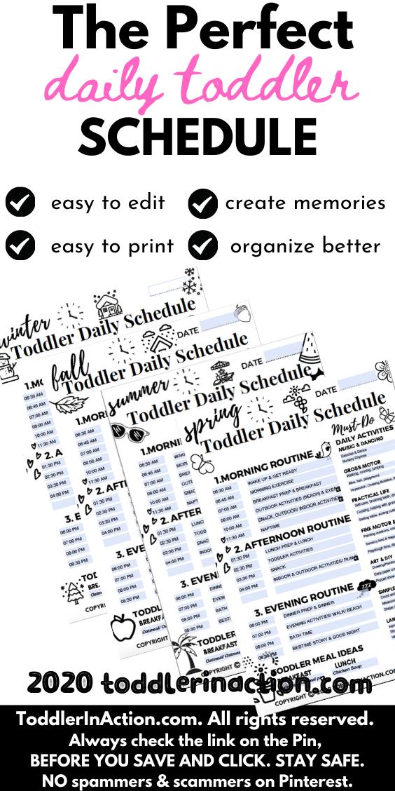4 Seasons Black & White Toddler Schedule Baby Book