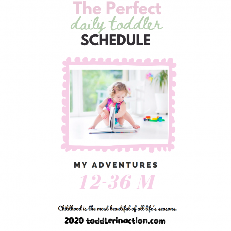 Daily Schedule 12_36Months