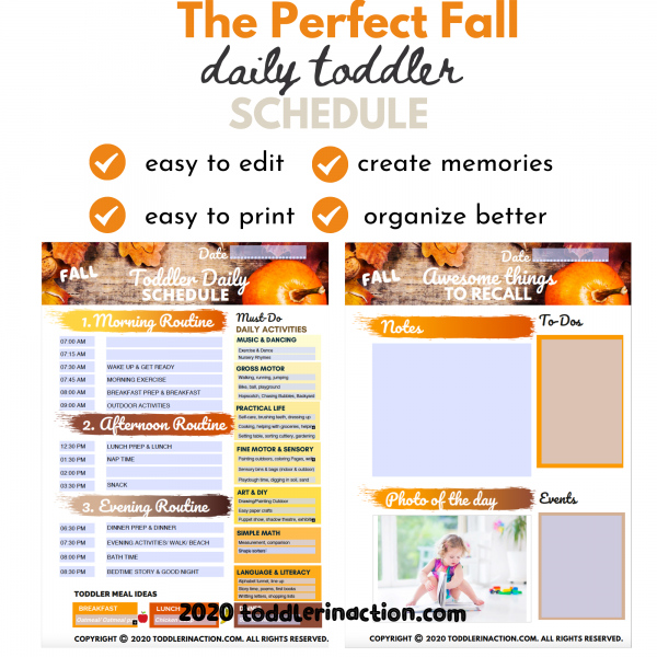 DAILY TODDLER SCHEDULE 4 Seasons Toddler/Baby Book Editable Printable