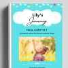 FROM BIRTH TO 3 BABY BOOK